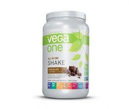 vega one protein shake